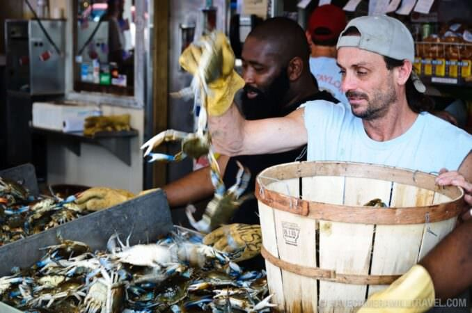Blue Crabs for sale at the Maine Ave Fish Market