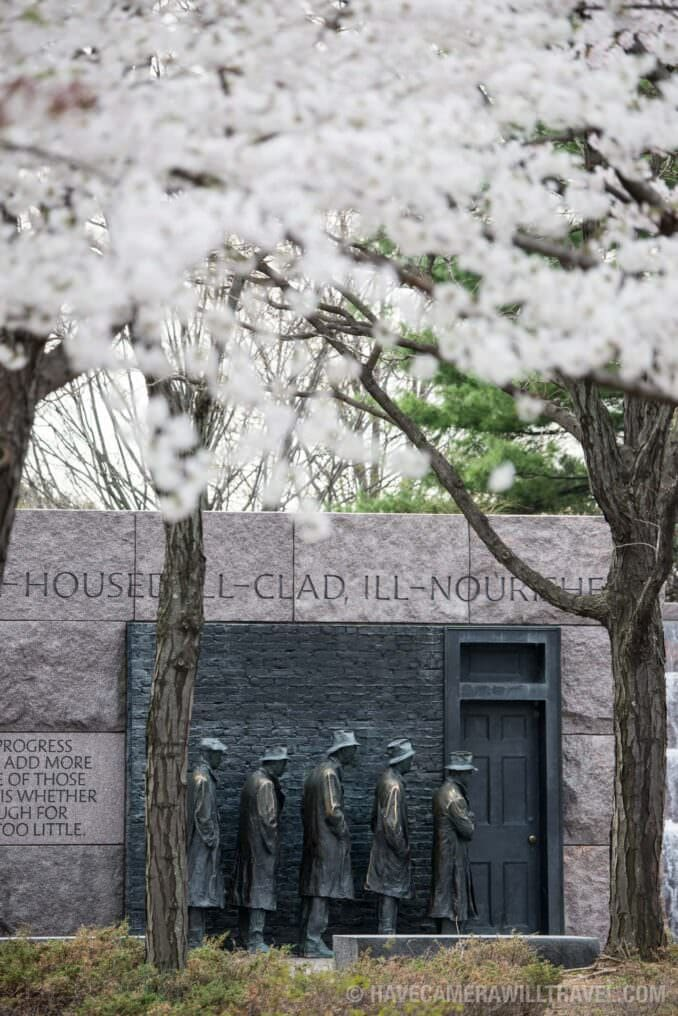 Cherry Blossoms at the FDR Memorial