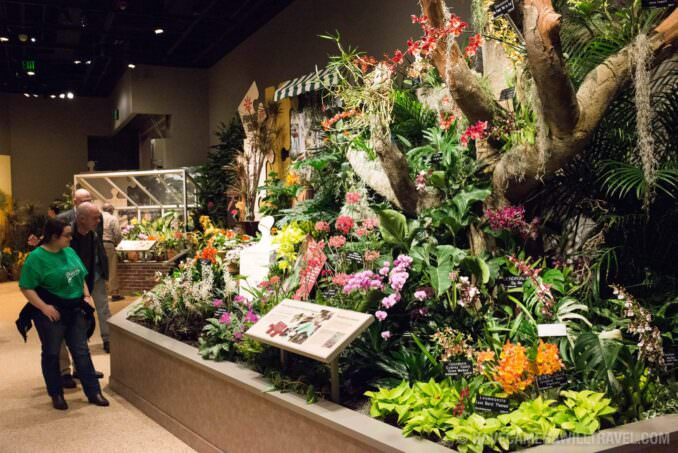 Flora Exhibit Smithsonian National History of Natural History