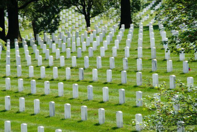 Headstones at Arlington National Cemetery