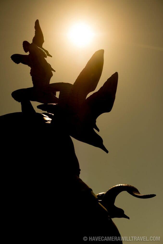 Navy-Marine Memorial in Arlington, VA, Seagulls in Silhouette