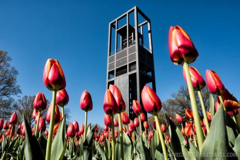 Netherlands Carillon in Arlington, Virginia, with Tulips