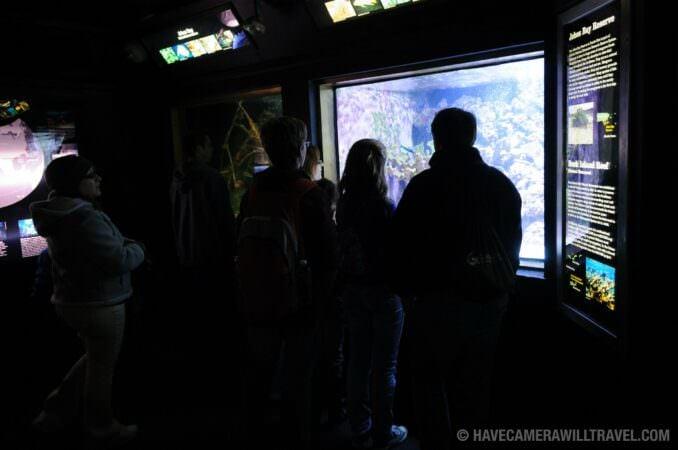 Photo of Tourists at the National Aquarium in Washington DC