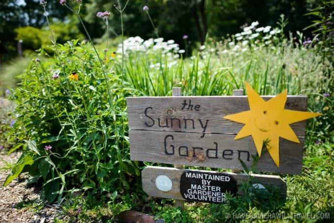 The Sunny Garden at Bon Air Park in Arlington VA