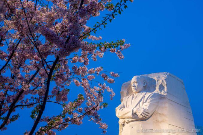 Washington DC Cherry Blossoms: April 13, 2014 - MLK Memorial