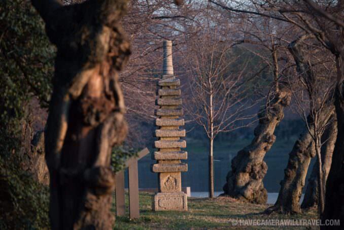 Washington DC Cherry Blossoms - March 9, 2016 - Japanese Pagoda