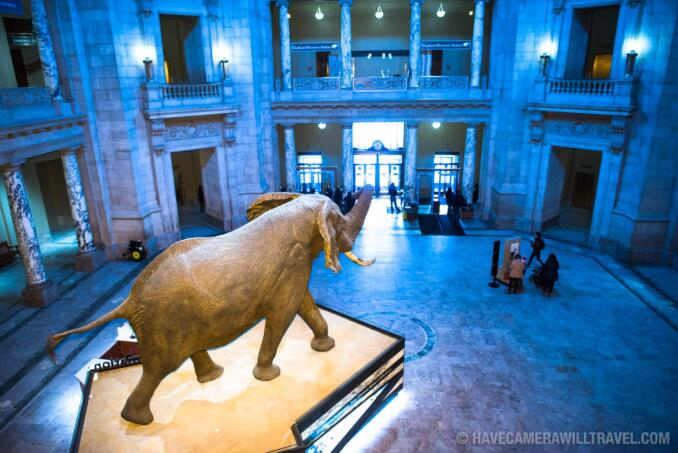 Smithsonian Natural History Museum in Washington DC
