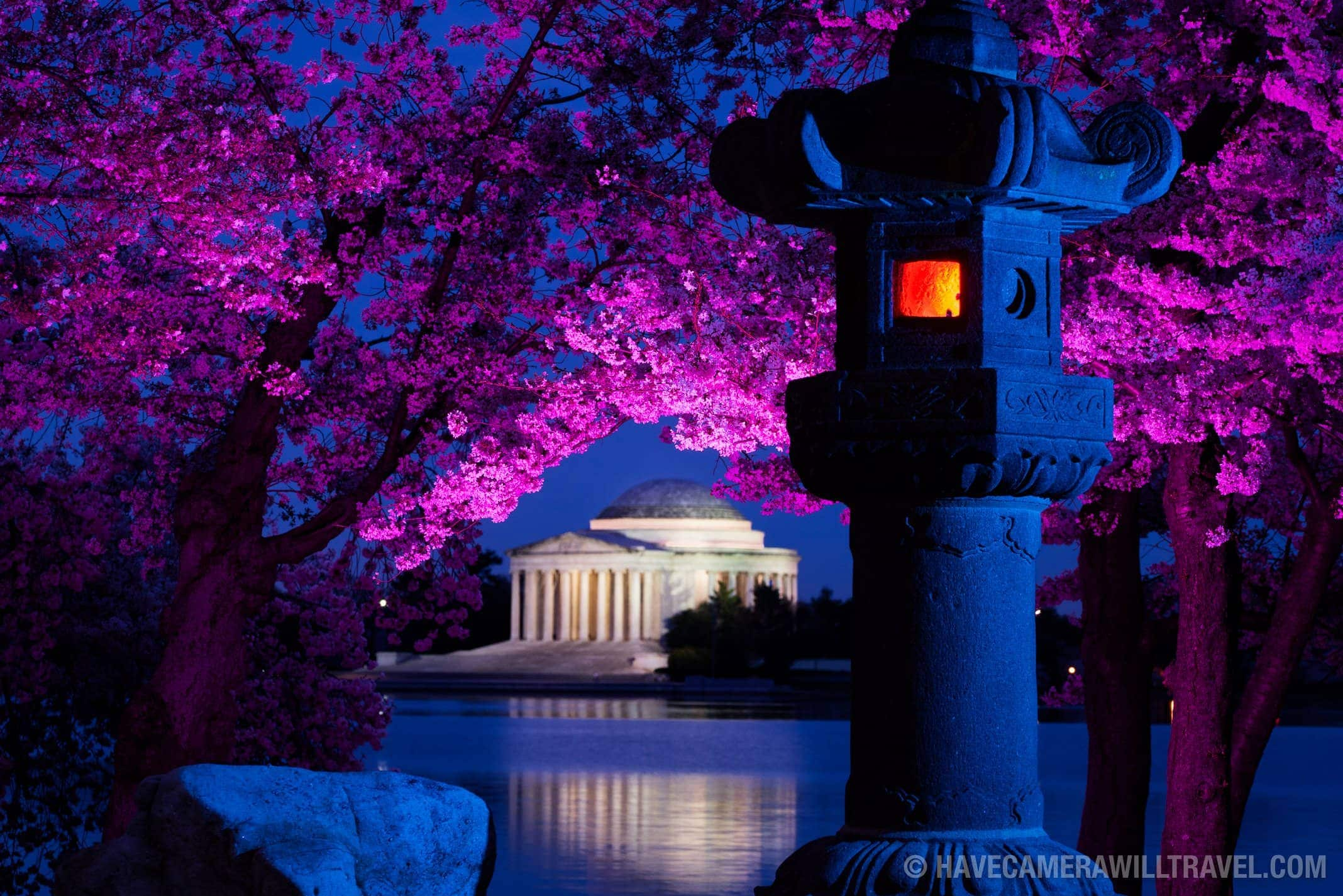 Japanese Lantern At The Tidal Basin Washington Dc Photo Guide